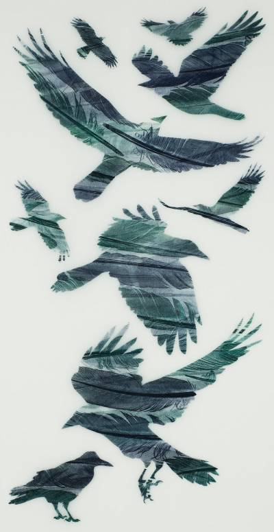A-Loosely-Woven-Flock-of-Rooks